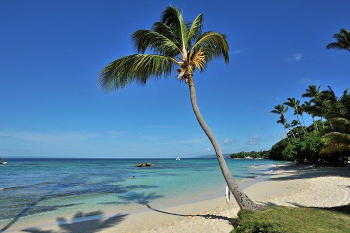 Домінікана – куточок раю на землі!